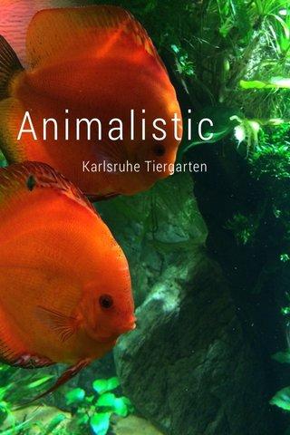 Animalistic Karlsruhe Tiergarten