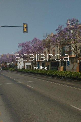jacaranda calling