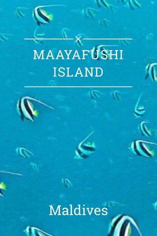 MAAYAFUSHI ISLAND Maldives