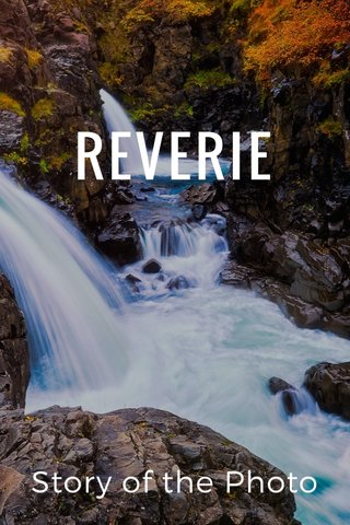 REVERIE Story of the Photo