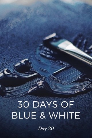 30 DAYS OF BLUE & WHITE Day 20