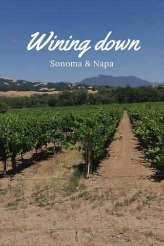 Wining down Sonoma & Napa