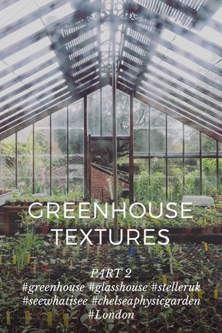 GREENHOUSE TEXTURES PART 2 #greenhouse #glasshouse #stelleruk #seewhatisee #chelseaphysicgarden #London