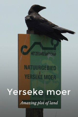 Yerseke moer Amazing plot of land