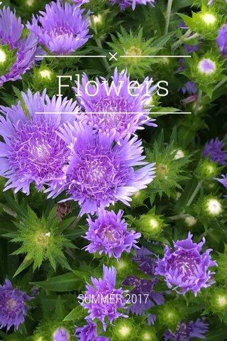 Flowers SUMMER 2017