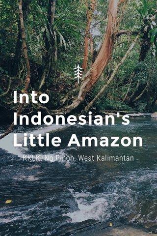 Into Indonesian's Little Amazon KKLK, Ng.Pinoh, West Kalimantan