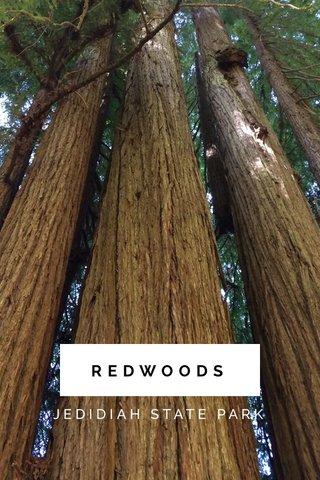 REDWOODS JEDIDIAH STATE PARK