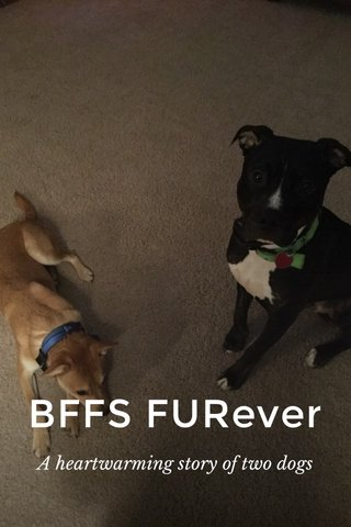 BFFS FURever A heartwarming story of two dogs