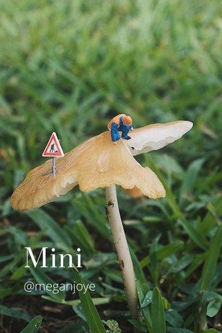 Mini @meganjoye