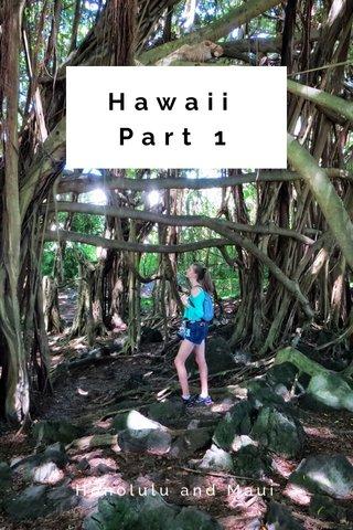 Hawaii Part 1 Honolulu and Maui