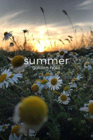 summer golden hour