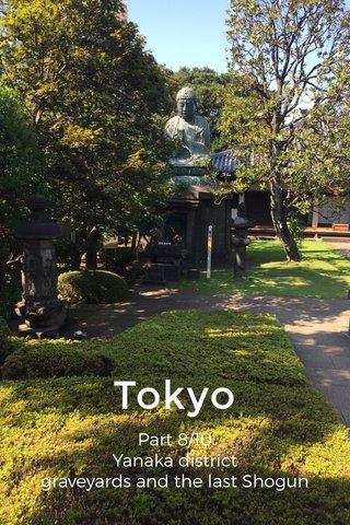 Tokyo Part 8/10 Yanaka district graveyards and the last Shogun