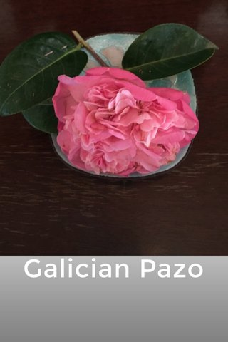Galician Pazo