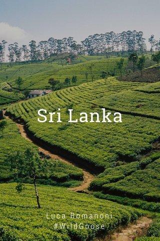 Sri Lanka Luca Romanoni #WildGoose