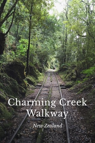 Charming Creek Walkway New Zealand