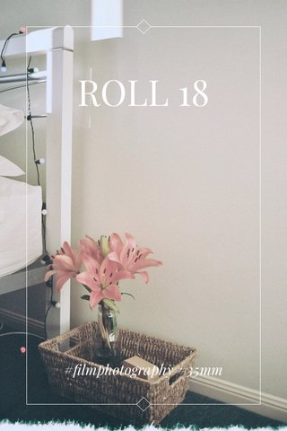 ROLL 18 #filmphotography #35mm