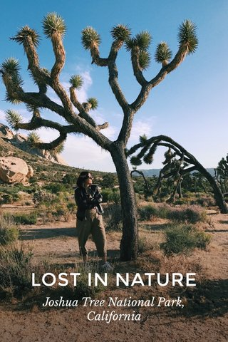 LOST IN NATURE Joshua Tree National Park, California