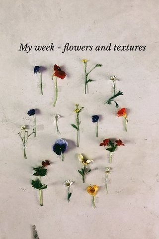 My week - flowers and textures