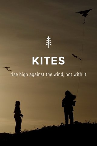 KITES rise high against the wind, not with it