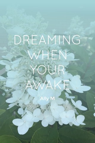 DREAMING WHEN YOUR AWAKE Ally M
