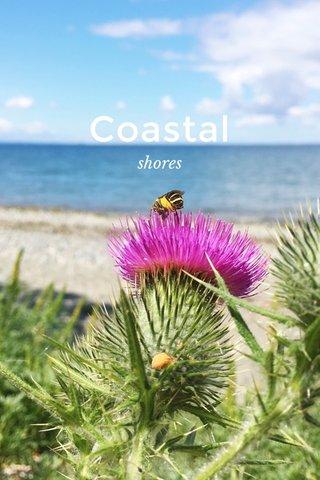 Coastal shores