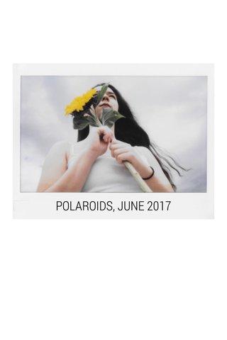 POLAROIDS, JUNE 2017