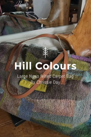 Hill Colours Large Nuno felted Carpet Bag By Chrissie Day