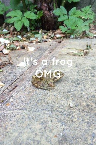 It's a frog OMG