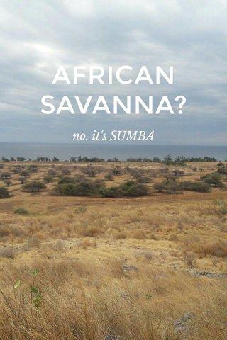 AFRICAN SAVANNA? no. it's SUMBA