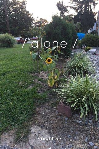 / alone / • night 3 •