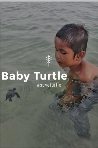 Baby Turtle #saveturtle