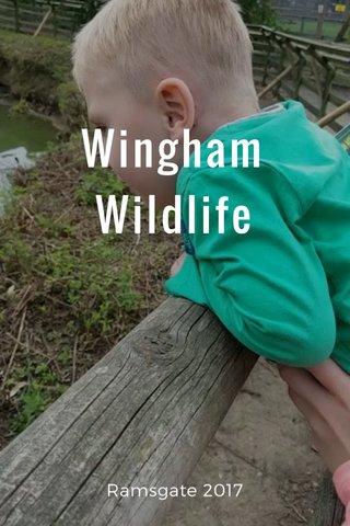 Wingham Wildlife Ramsgate 2017