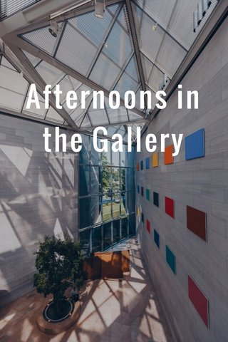 Afternoons in the Gallery