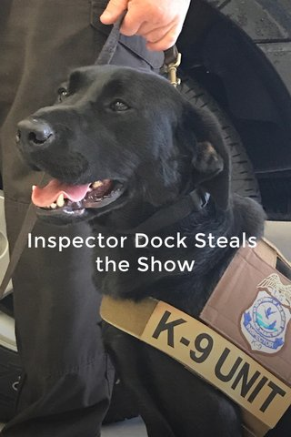 Inspector Dock Steals the Show