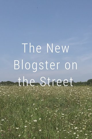 The New Blogster on the Street