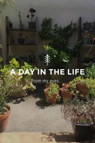 A DAY IN THE LIFE From my eyes....