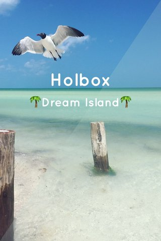 Holbox 🌴Dream Island🌴