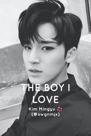 THE BOY I LOVE Kim Mingyu 💞 (@swgnmjx)