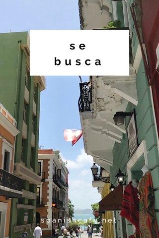 se busca spanishcafe.net