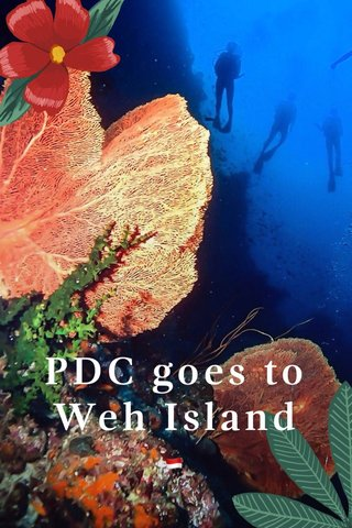 PDC goes to Weh Island 🇮🇩