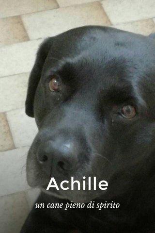 Achille un cane pieno di spirito