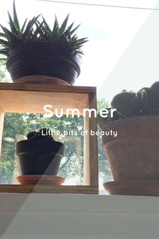 Summer Little bits of beauty