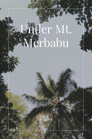 Under Mt. Merbabu a story