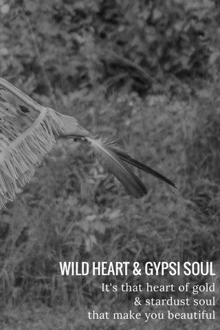 WILD HEART & GYPSI SOUL It's that heart of gold & stardust soul that make you beautiful