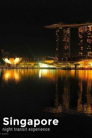 Singapore night transit experience