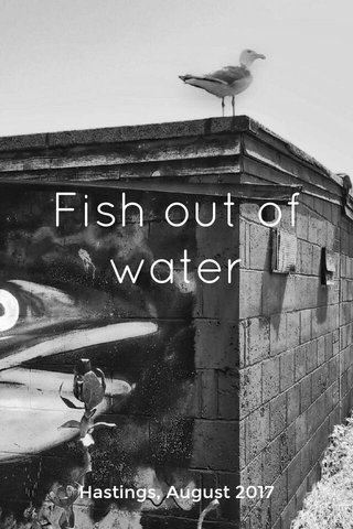 Fish out of water Hastings, August 2017