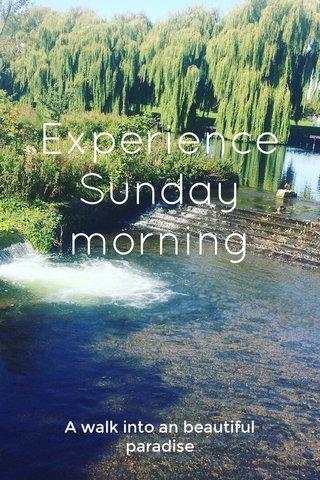 Experience Sunday morning A walk into an beautiful paradise