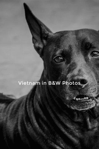 Vietnam in B&W Photos