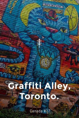 Graffiti Alley, Toronto. Canada #17
