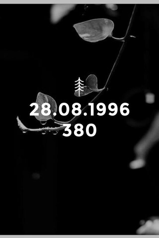28.08.1996 380